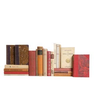 Italian Language Selections - 20 Decorative Books