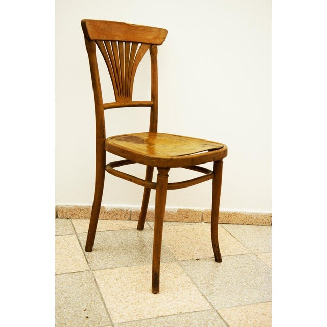Model No. 221 Chair for Thonet, 1900 For Sale - Image 5 of 5