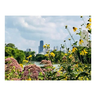 """""""Chicago Through the Flowers"""" By Josh Moulton Photograph"""
