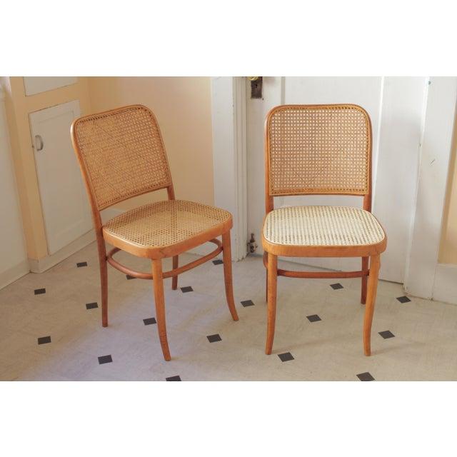 Orange Josef Hoffmann 811 Prague Chairs - A Pair For Sale - Image 8 of 8