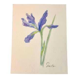"""Nancy Smith Contemporary Miniature Botanical Watercolor, """"Wise Iris"""" For Sale"""