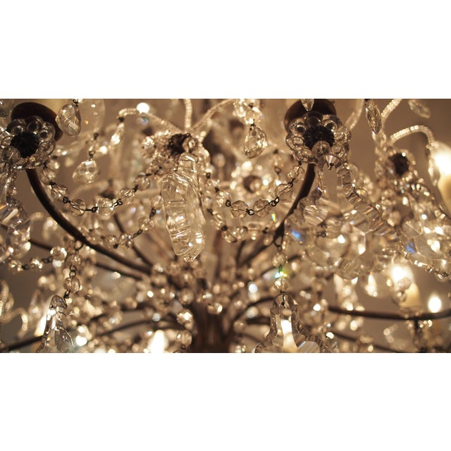 Silver Eight Light Crystal Chandelier with Flowers on Beaded Stems For Sale - Image 8 of 10