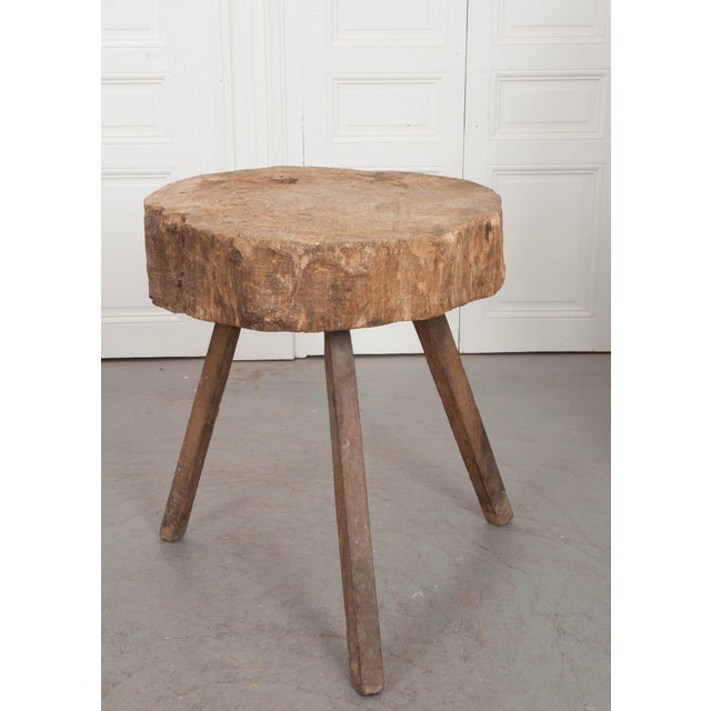 """Mid 19th Century French 19th Century Provincial """"Tree Trunk"""" Chopping Block For Sale - Image 4 of 13"""