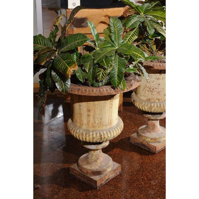 Pair of French Painted Iron Urns For Sale - Image 4 of 7