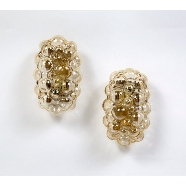 Oblong Translucent Amber Glass Bubble Sconces by Helena Tynell (Pair) For Sale - Image 10 of 10