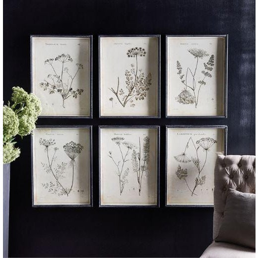 All the charm & detail of these wildflowers is illustrated in shades of gray, black & white. Paired with a crisp black...