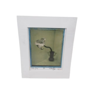 Vintage Polaroid Photograph Titled: Calla Study and Signed by the Artist: Michael Bryant For Sale
