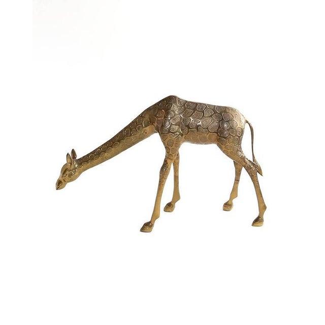 Hollywood Regency Vintage Cast Bronze Giraffe Medium Sized Sculpture For Sale - Image 3 of 7