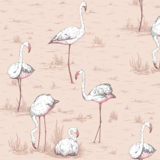 Cole & Son Flamingos Classic Botanical Style Wallpaper - 11 Yard Roll For Sale