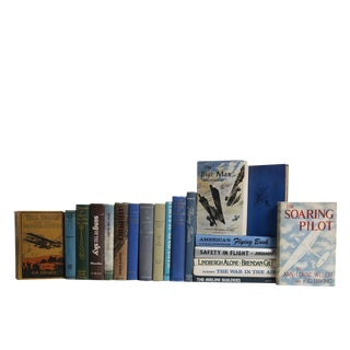 Blue Sky Aviation Library - Set of Twenty Decorative Books For Sale