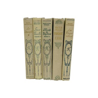 Antique French Classics - Set of 5 For Sale