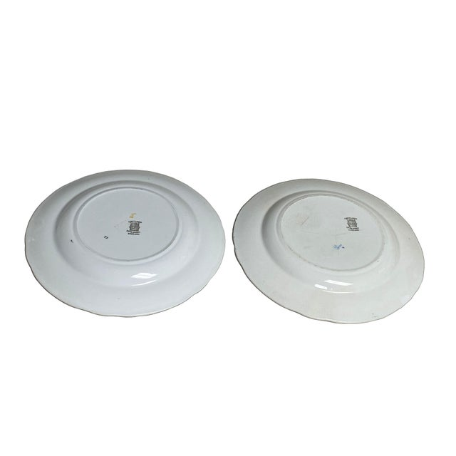 Ceramic Copeland Spode Bird and Border Plates - a Pair For Sale - Image 7 of 8