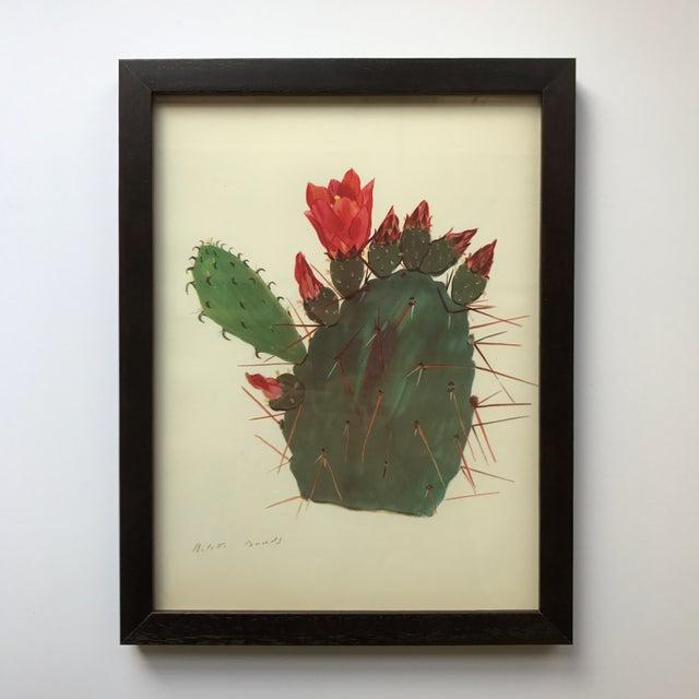 Framed Rock Plants - Set of 32 For Sale - Image 10 of 11