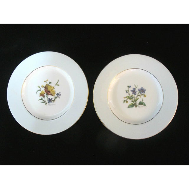Early 20th Century Minton Blue Gilt Painted Plates Signed Colclough Fox - Set of 12 For Sale In Portland, OR - Image 6 of 10