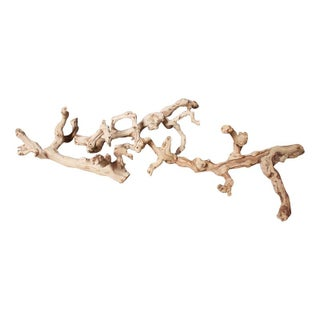 Decorative Gnarled Driftwood