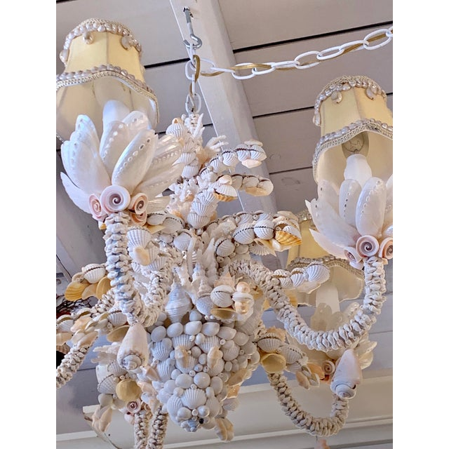 Christa's South Seashells Small Five-Light Shell Adorned Chandelier For Sale - Image 4 of 9