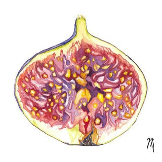Fig Watercolor Painting