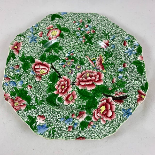 Early 19th Century Spode's New Fayence King Chintz Pattern Transferware Plate, Circa 1820s For Sale - Image 5 of 13