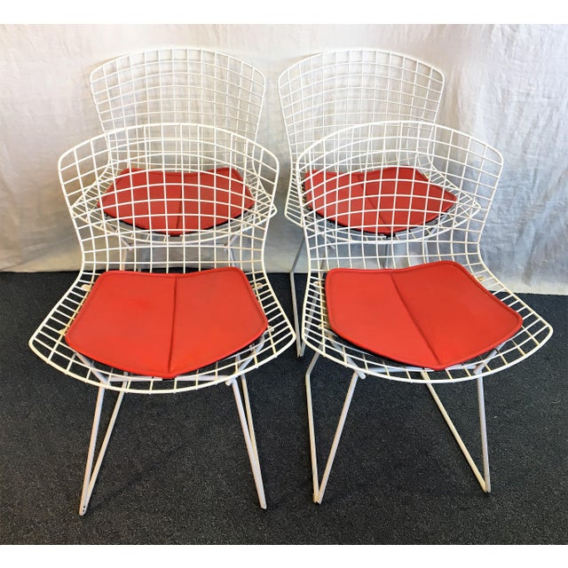 Harry Bertoia for Knoll Chairs - Set of 4 - Image 2 of 7