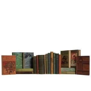 Antique Earthtone Children's Book Set, S/20 For Sale