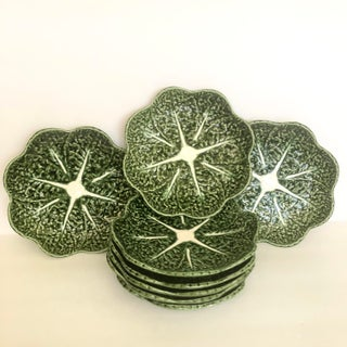 Olfaire Green Cabbage Leaf Plates- Set of 8 Preview