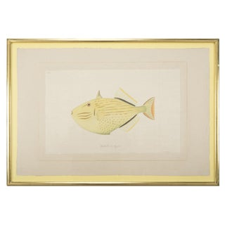 La Roche Laffitte Handpainted Fish on Silk For Sale