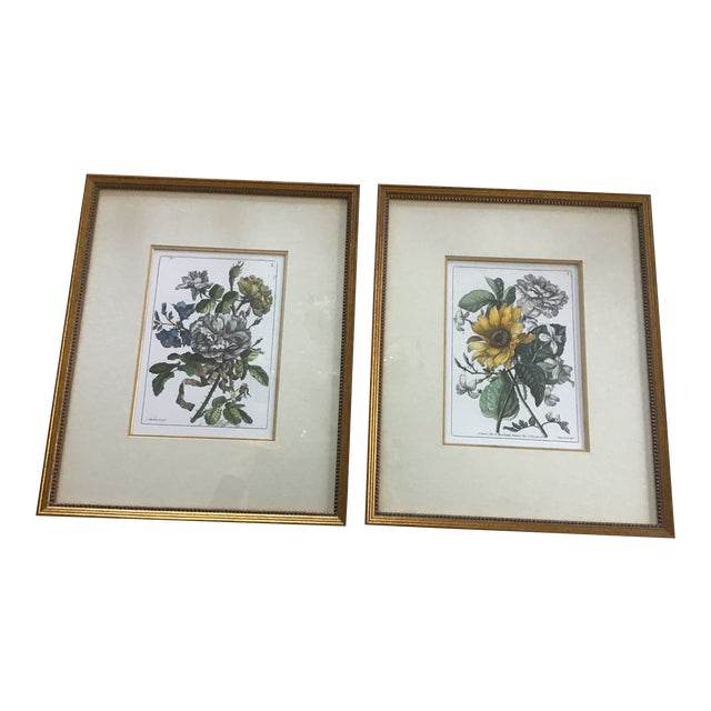 Vintage W  King Ambler Floral Botanical Prints - a Pair