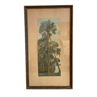 """Mid 20th Century """"Moss and Palms"""" Hand-Painted Photograph, Framed For Sale"""