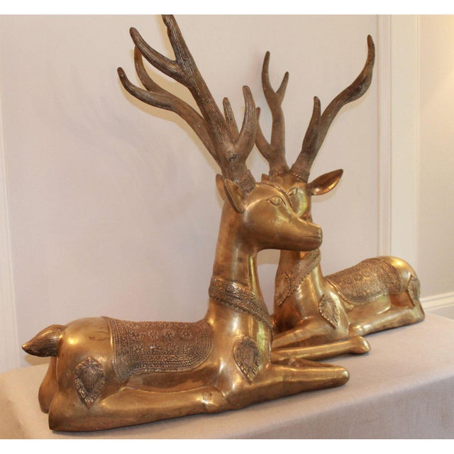 1960s Large Vintage Recumbent Brass Stags / Deer - a Pair For Sale - Image 5 of 9