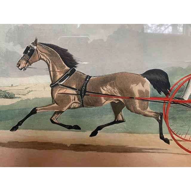 """Lord William"" Trotting Horse 1845 Aquatint For Sale - Image 4 of 13"