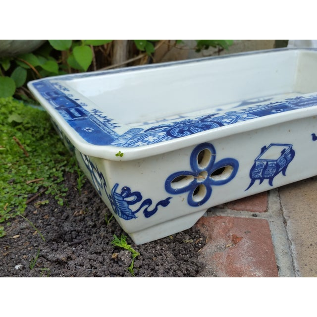 Hand Painted Blue & White Bulb Forcing Tray - Image 6 of 6