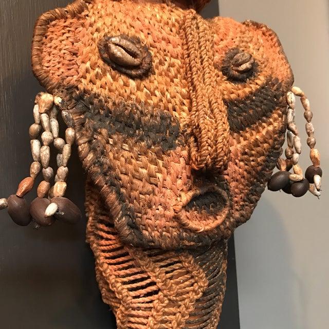 Tribal Koteka of New Guinea - Image 5 of 9