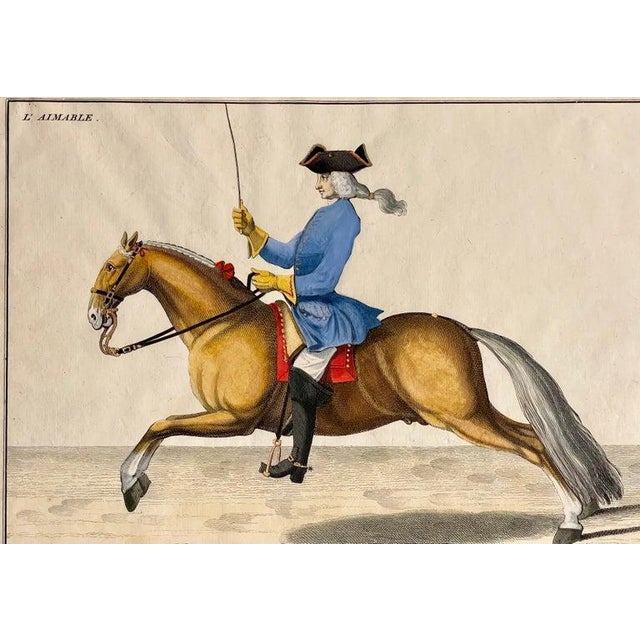 Four Engravings of Horse Riders L' Aimable, Le Joli, Le Sanspareil, Le Poupon For Sale - Image 4 of 11