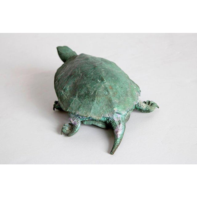 Late 19th Century Japanese Bronze Tortoise, Meiji Period For Sale In Dallas - Image 6 of 13