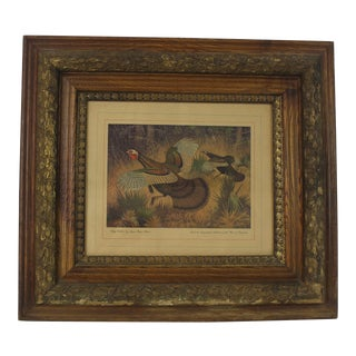 1940s 'King Gobbler' Print with Victorian Frame by Lynn Bogue Hunt For Sale