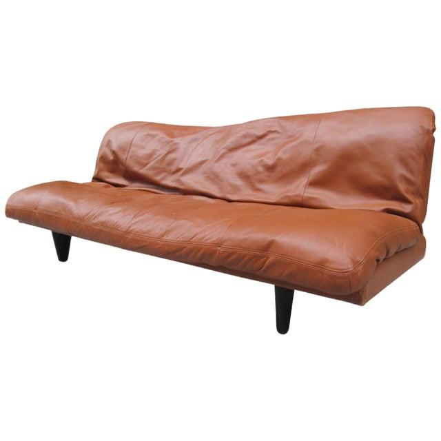 Fantastic Leather Convertible Sofa By De Sede Frankydiablos Diy Chair Ideas Frankydiabloscom