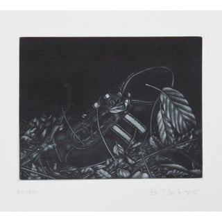 Gerde Ebert, Sneaker, Mezzotint For Sale