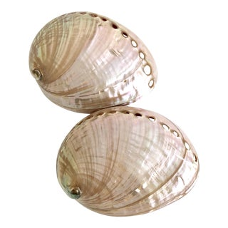 Australian Abalone Shells - a Pair For Sale