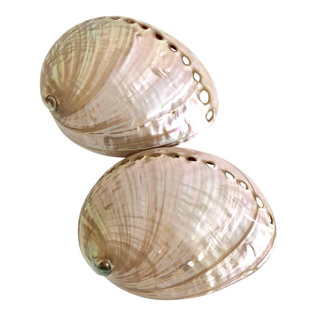 Australian Abalone Shells - a Pair For Sale