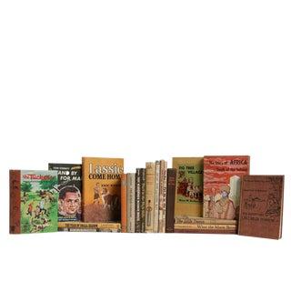 Vintage Children's Book Set in Cobblestone, S/20 For Sale