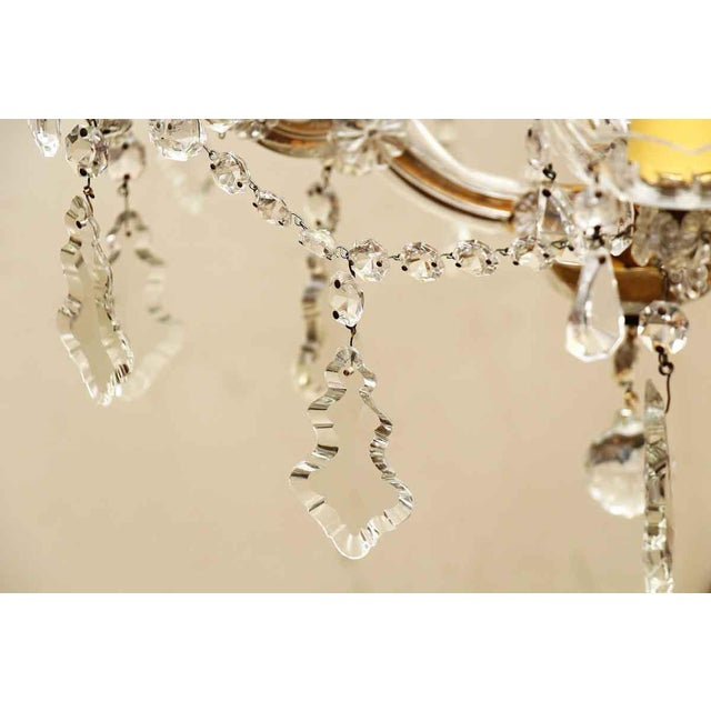 Marie Therese Crystal Antique Chandelier For Sale - Image 9 of 12