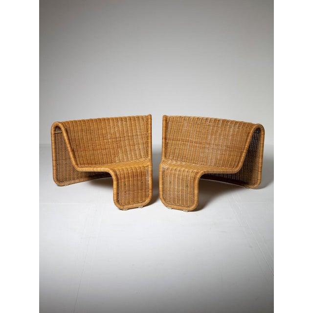 Large Wicker Set by Tito Agnoli for Bonacina For Sale - Image 6 of 10