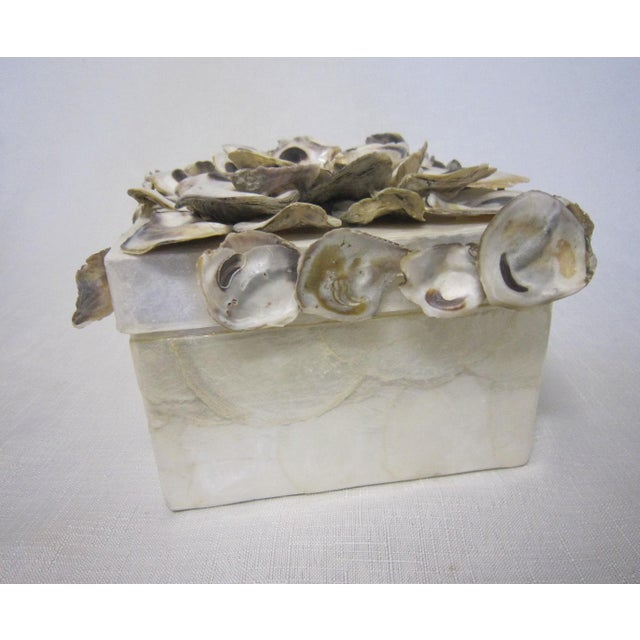 Cadiz & Oyster Shell Box - Image 6 of 6