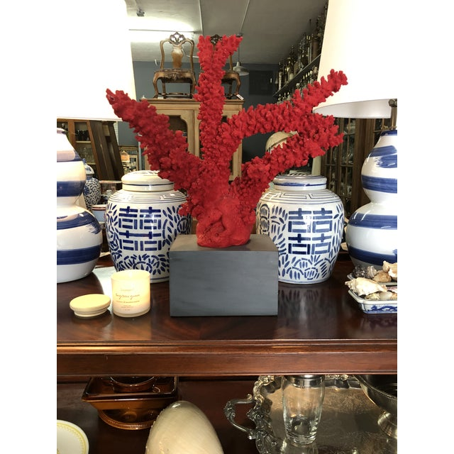 Cottage Oversized Red Coral , Faux For Sale - Image 3 of 5