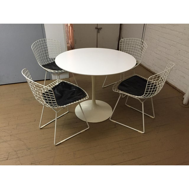 Mid-Century Modern Knoll Dining Chairs Our Eero Saarinen table was completed by these fabulous Bertoia wire chairs. A set...