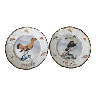 Vintage Chinoiserie Toucan and Hoopoe Bird Plates - a Pair For Sale