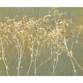 """Hannah Wong, """"Mustard Seed"""", Botanic Abstract Lithograph For Sale"""