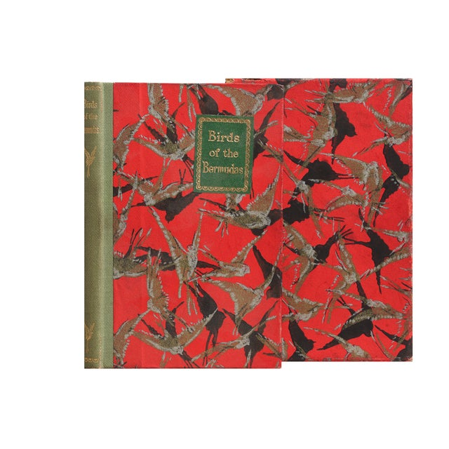 Birds of the Bermudas: A Guide to the Resident and Seasonal Birds of the Bermuda Islands (No author stated). Pictorial red...