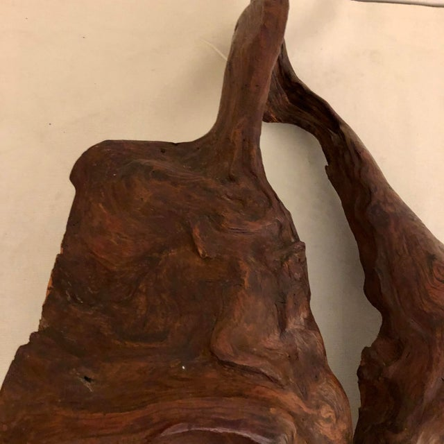 Redwood Naturally Formed Sculpture For Sale In San Antonio - Image 6 of 11