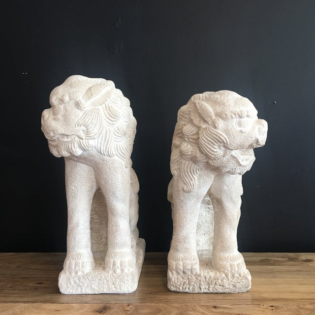 2000 - 2009 Large Heavy Plaster Male & Female Foo Dog Statues For Sale - Image 5 of 10